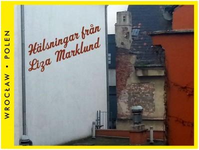 Liza marklund satsar pa usa